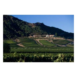 Antica Winery