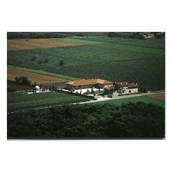 Borgo Conventi Estate