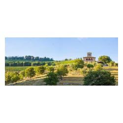 Castello d'Albola Estate