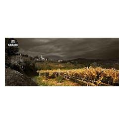Cesari Winery
