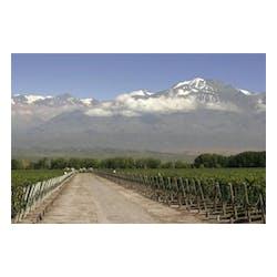 Chakana Winery