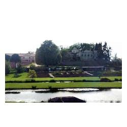 Chateau Lafite Rothschild