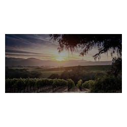 Ghost Pines Vineyard