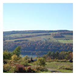 Keuka Lake Vineyards