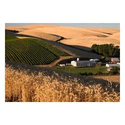 Spring Valley Vineyard