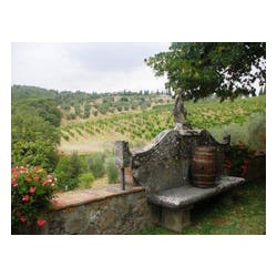 Dievole Vineyards