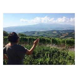 Gianni Brunelli Winery