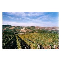 Roscato Winery