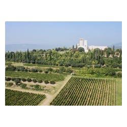 San Giorgio Winery