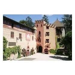 Tiefenbrunner Castel Turmhof Winery