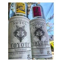 Coyote Sotol