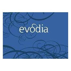 Evodia