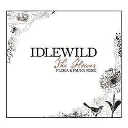Idlewild 'The Flower' Rose 2017 image