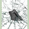 Oh, Schist! Riesling 2019