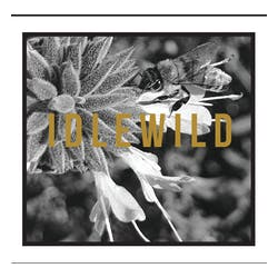 Idlewild 'The Bee White' 2018 image
