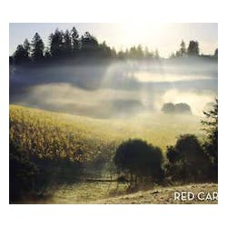 Red Car 'Heaven & Earth' Pinot Noir 2008 image
